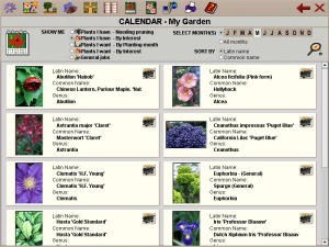 Make visual, printable plant lists