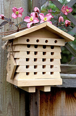 Solitary bee house for masonr and leaf cutter bees